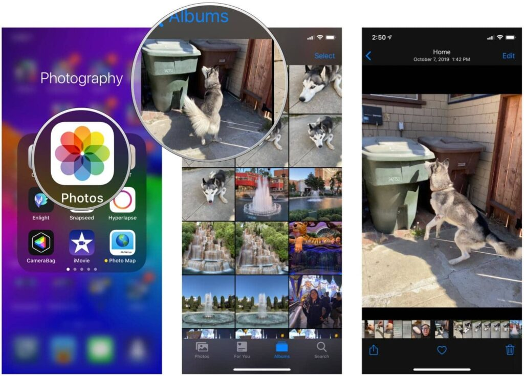 viewing live photo on newer iPhone model
