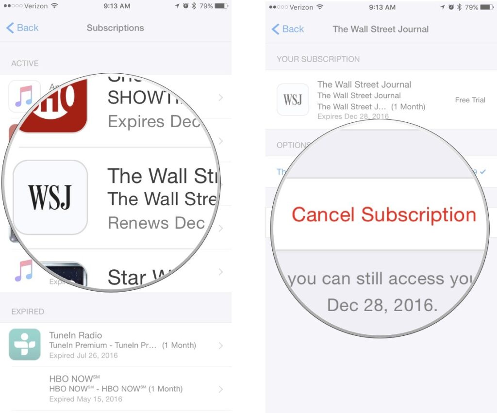 cancel an App Store or News+ subscription on an iPhone or iPad