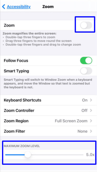 zoom accessibility iPhone