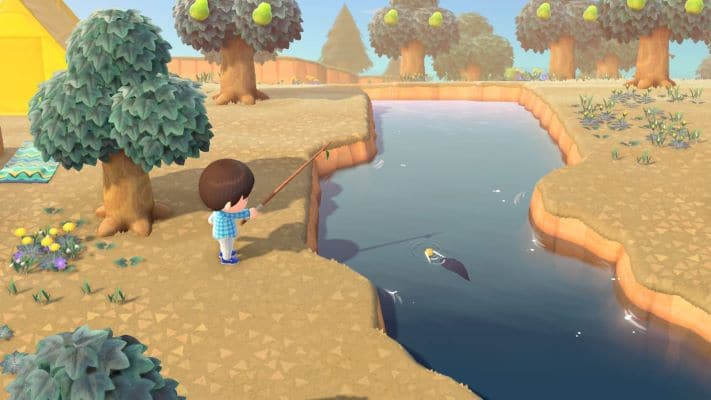 Catch fish in Animal Crossing New Horizons